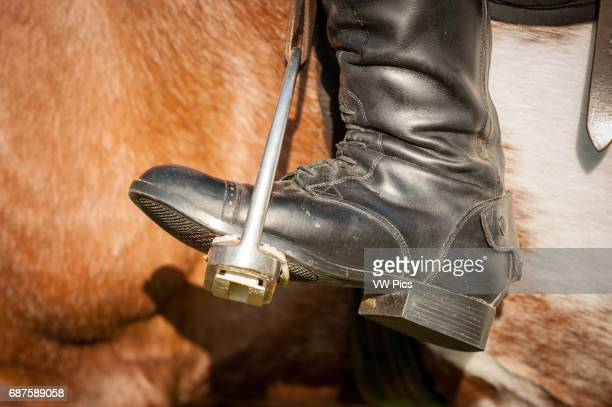 Closeup of a riding boot in stirrups in Baltimore County MD USA