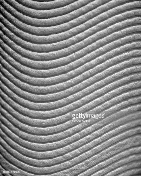 close-up of a roll of paper towel - ribbed stock pictures, royalty-free photos & images