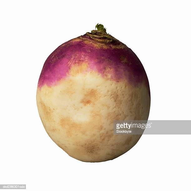 close-up of a rutabaga - rutabaga stock pictures, royalty-free photos & images