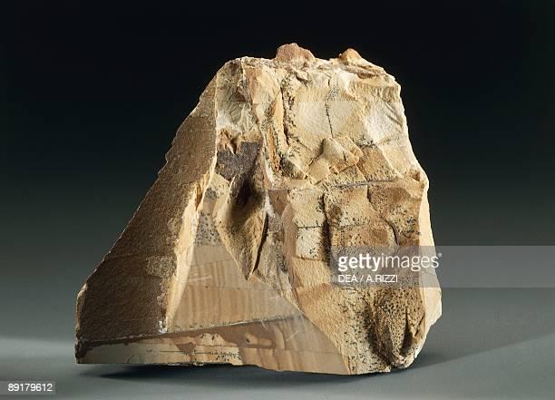Closeup of a Sandstone rock
