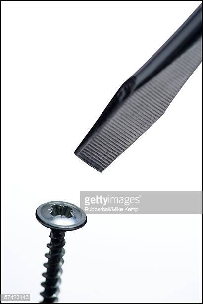 close-up of a screw and a screwdriver - mismatch stock pictures, royalty-free photos & images