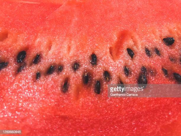 close-up of a slice of watermelon - watermelon stock pictures, royalty-free photos & images