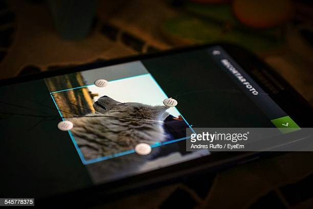 close-up of a smart phone - andres ruffo bildbanksfoton och bilder