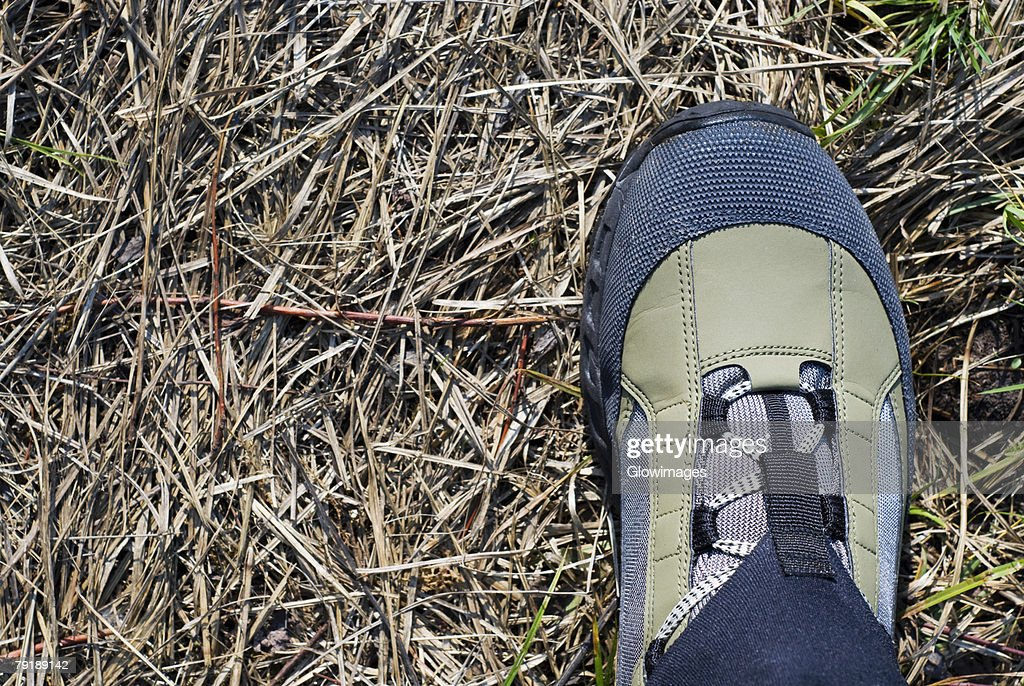Close-up of a sports shoe : Foto de stock
