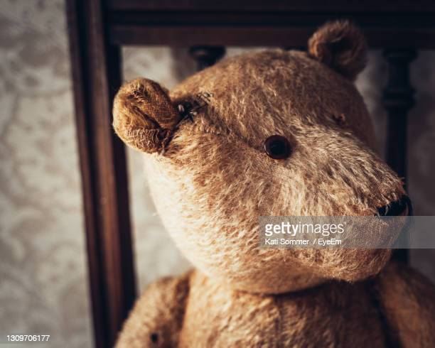 close-up of a stuffed toy - teddy bear stock pictures, royalty-free photos & images