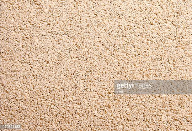 A close-up of a tan carpet swatch