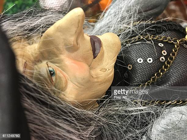 close-up of a ugly female witch - ugly witches stock photos and pictures