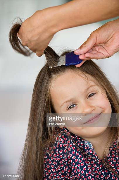 close-up of a woman's hand combing her daughter's hair - louse stock pictures, royalty-free photos & images
