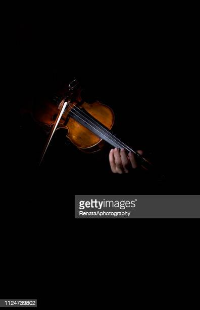 close-up of a woman's  hands playing the violin - violin family stock photos and pictures