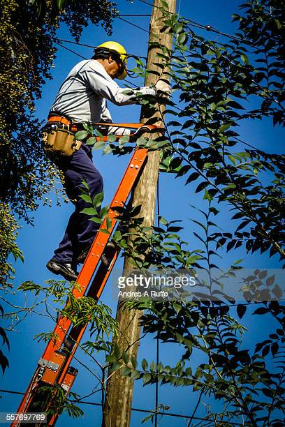 Closeup of a worker working on a TV cable installation above an orange ladder with safety harness surrounded by green plants in the city of...