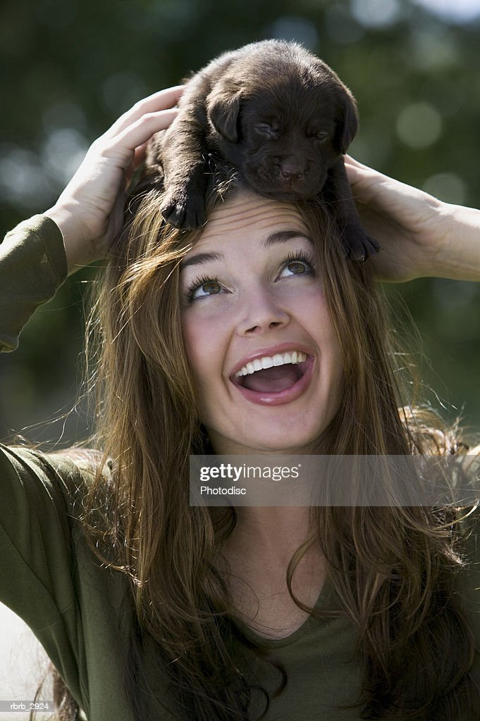 Close-up of a young woman holding a puppy on her head : Foto de stock