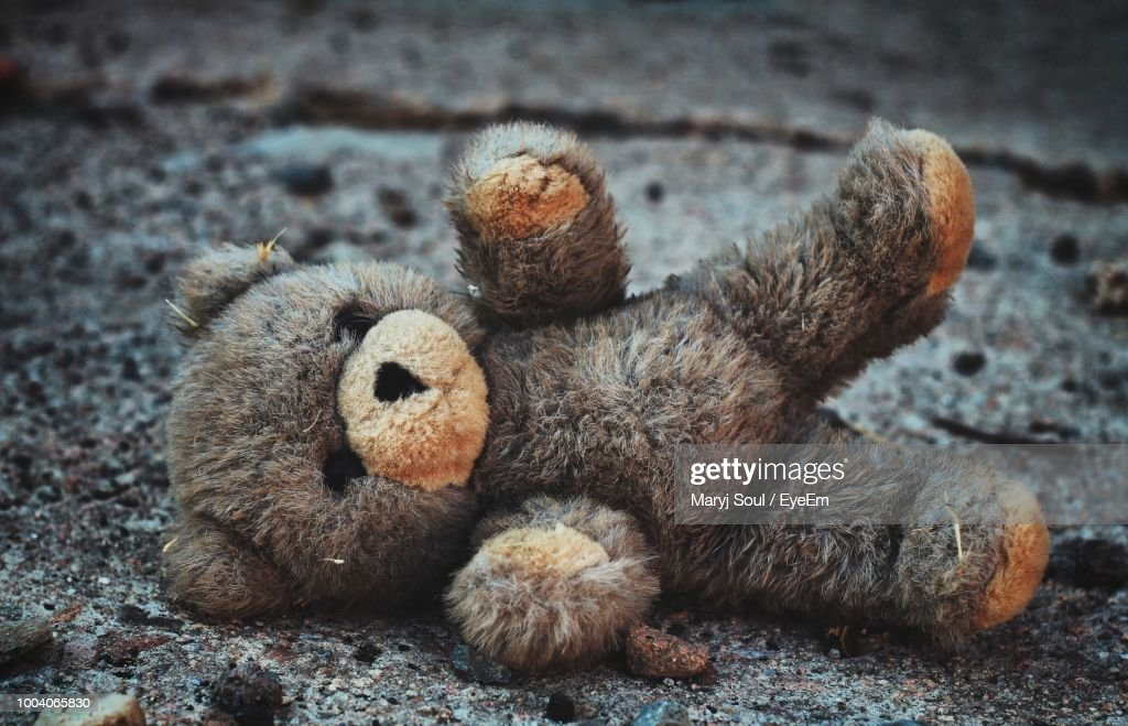 Close-Up Of Abandoned Teddy Bear On Road : Stock Photo