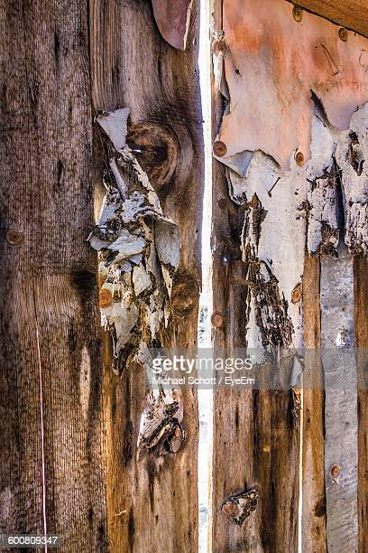 Close-Up Of Abandoned Wooden Wall