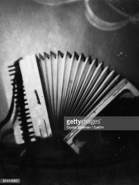 Close-Up Of Accordion