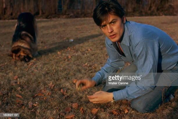 Closeup Of Alain Delon Attitude d'Alain DELON agenouillé sur l'herbe jouant avec son chien berger allemand