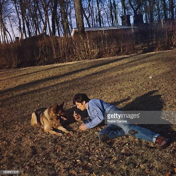 Closeup Of Alain Delon Attitude d'Alain DELON allongé dans l'herbe jouant avec son chien berger allemand