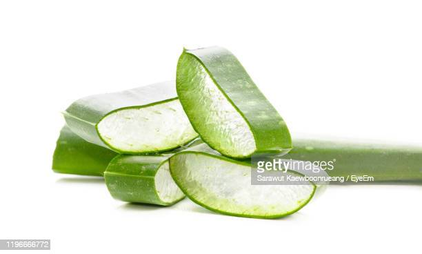 close-up of aloe vera plant against white background - aloe stock pictures, royalty-free photos & images