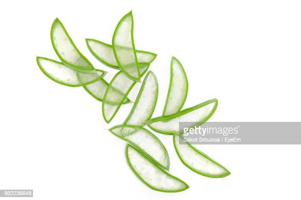 Close-Up Of Aloe Vera Plants Over White Background