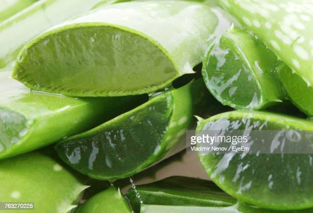 Close-Up Of Aloe Vera Slices Against White Background