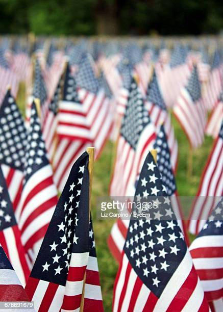 close-up of american flags at cemetery - memorial day background stock pictures, royalty-free photos & images