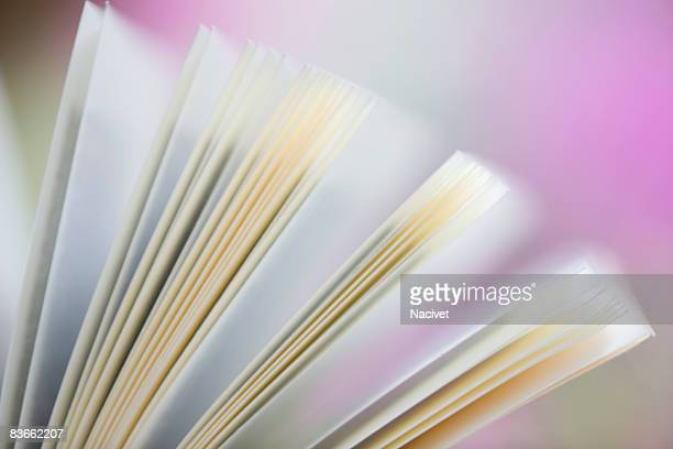 Close-up of an open book with pages splayed