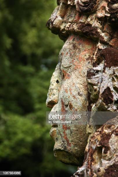 closeup of ancient mayan carving, copan, honduras - ancient history stock pictures, royalty-free photos & images