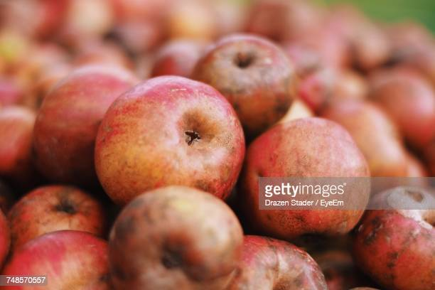 close-up of apples at market for sale - drazen stock pictures, royalty-free photos & images