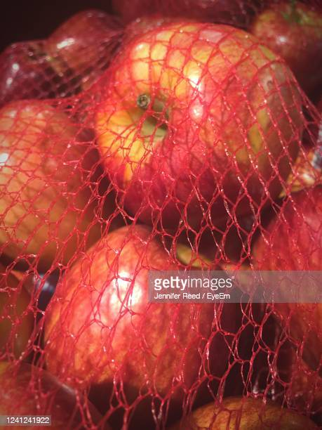 close-up of apples - jennifer reed stock pictures, royalty-free photos & images