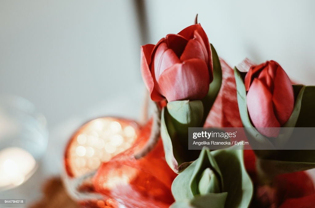 Close-Up Of Artificial Roses : Stock Photo
