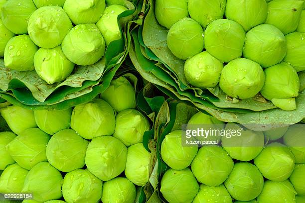 Close-up of Asian Green Fruits