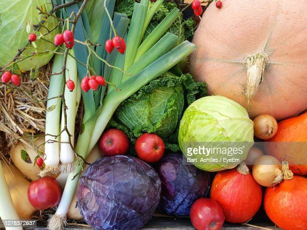 close-up of autumn vegetables - eyeem collection stock pictures, royalty-free photos & images