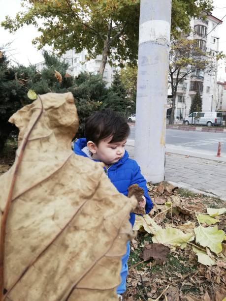 Close-Up Of Baby Boy Holding Dry Leaf