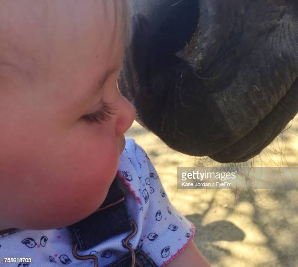 Close-Up Of Baby Girl By Horse
