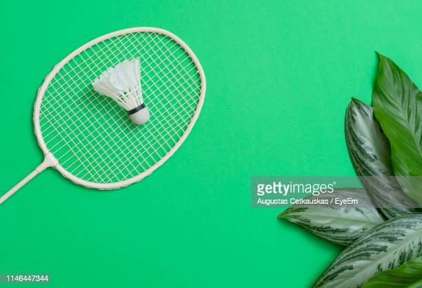close-up of badminton and shuttlecock with leaves over colored background - shuttlecock stock pictures, royalty-free photos & images