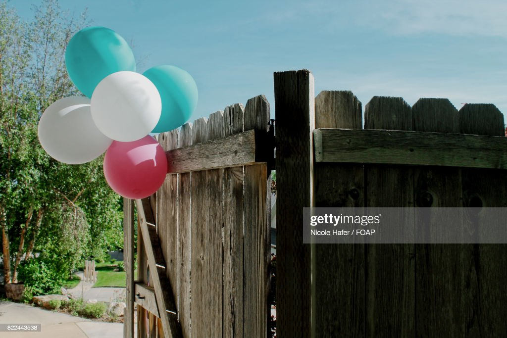 Close-up of balloons on gate : Stock Photo