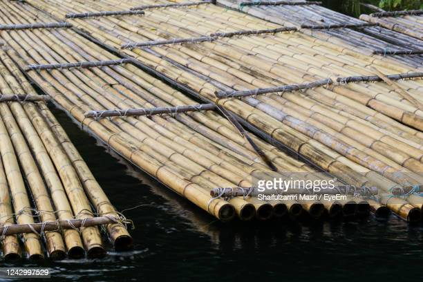 close-up of bamboo raft in water - shaifulzamri stock pictures, royalty-free photos & images