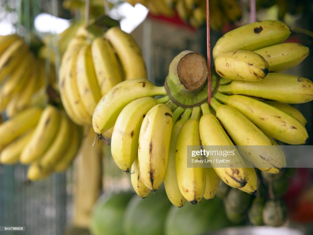 Close-Up Of Banana For Sale Hanging At Market Stall : Stock Photo