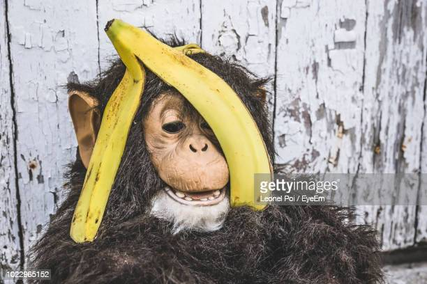 close-up of banana peel on monkey statue - poi_(food) stock pictures, royalty-free photos & images