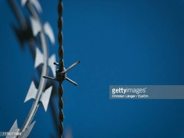 close-up of barbed wire against clear blue sky - barbed wire stock pictures, royalty-free photos & images