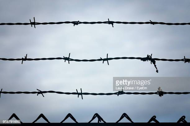 close-up of barbed wire against sky - barbed wire stock pictures, royalty-free photos & images
