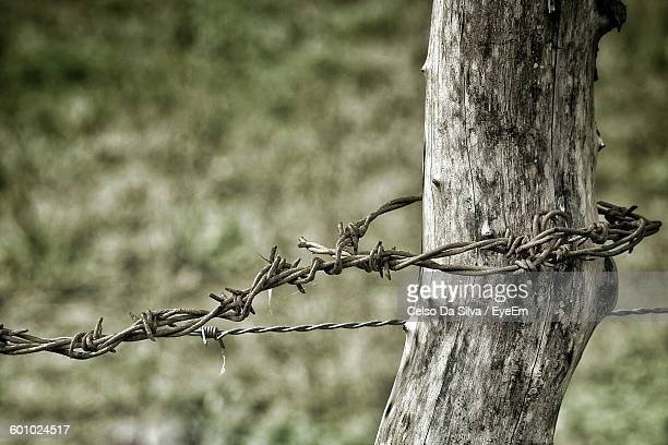 Close-Up Of Barbed Wire Fence On Wooden Post