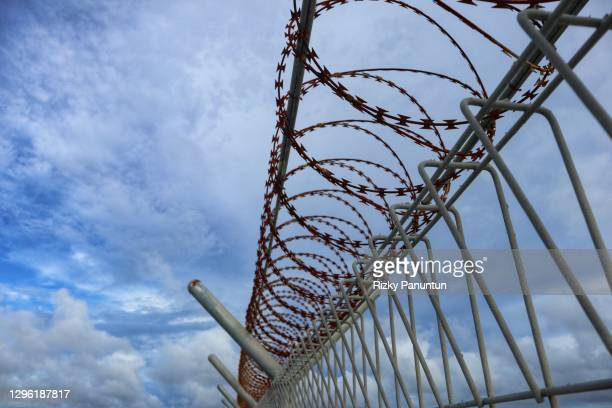 close-up of barbed wire - prison stock pictures, royalty-free photos & images