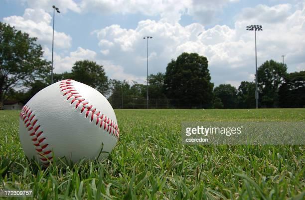 Closeup of baseball sitting in grassy field under cloudy sky