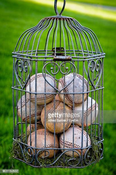 Close-Up Of Baseballs In Birdcage Hanging On Field