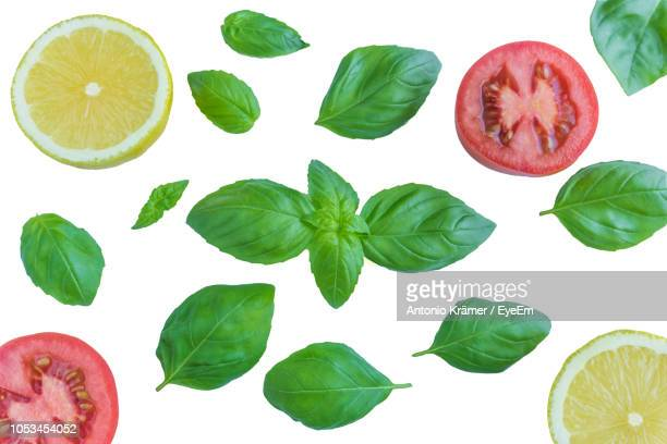 close-up of basil leaves with tomato and lemon slices over white background - basil stock pictures, royalty-free photos & images