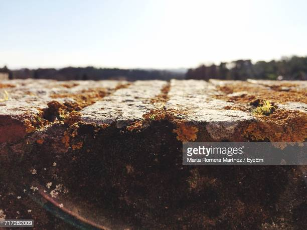close-up of beach against sky - san miniato stock pictures, royalty-free photos & images