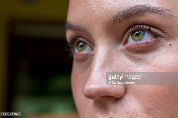 close-up of beautiful young woman eyes - human nose stock pictures, royalty-free photos & images