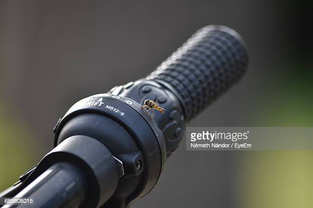 Close-Up Of Bee On Motorcycle Handle