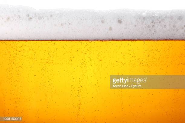 close-up of beer in glass - ビール ストックフォトと画像