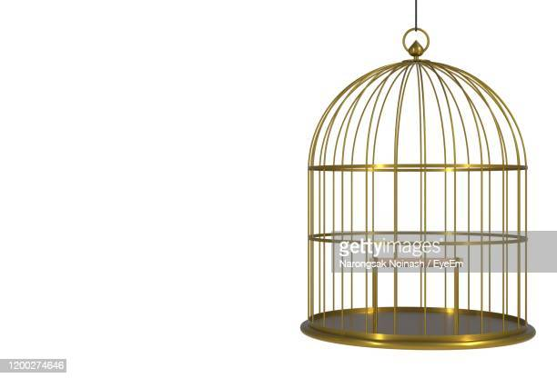 close-up of birdcage against white background - cage stock pictures, royalty-free photos & images